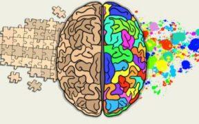 Tři základní reakce mozku a jak je využít